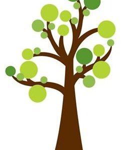 Programa De Voluntariado Jovem Para A Natureza E Florestas Com Candidaturas Abertas
