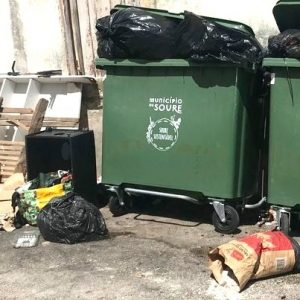 Câmara De Soure Recorda Munícipes Que Tem Disponível Um Serviço Gratuito De Recolha De Monos Ou Resíduos Verdes
