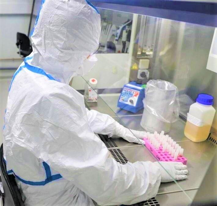 Terapia Inovadora Que Pretende Eliminar O Vírus Que Provoca A Covid-19 Em Desenvolvimento Em Coimbra