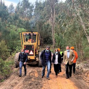 Diretora Regional Das Florestas Visitou Obras Em Curso De Defesa Contra Incêndios No Concelho De Pombal