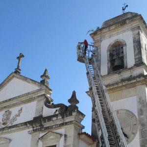 Torre Da Igreja Matriz De Soure Onde Algumas Sementes Florescem Foi Alvo De Limpeza