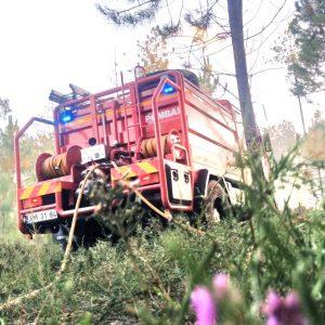Incêndio Na A1 Entre Pombal-Soure Obrigou Ao Corte Na Circulação Devido Ao Fumo Intenso