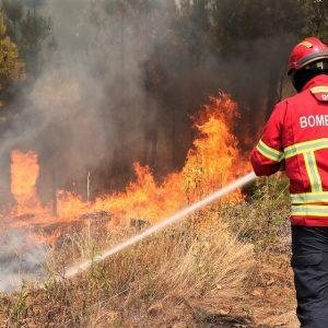 Detido Suspeito De Ter Ateado 7 Focos De Incêndio No Concelho De Coimbra